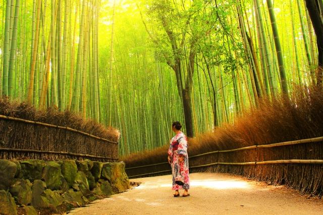 京都で写真館をお探しならここ!口コミ評価ランキング